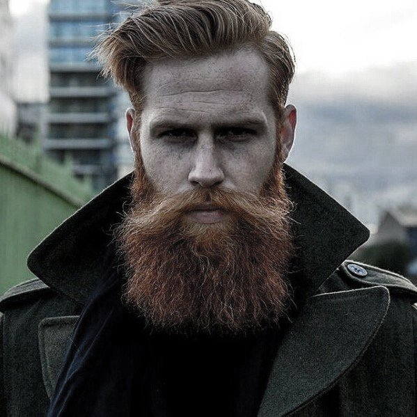 The Best 60 Awesome Beards For Men Masculine F*C**L Hair Ideas Pictures