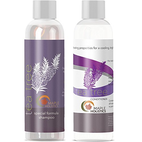 The Best Tea Tree Oil Shampoo And Hair Conditioner Set Natural Anti Pictures