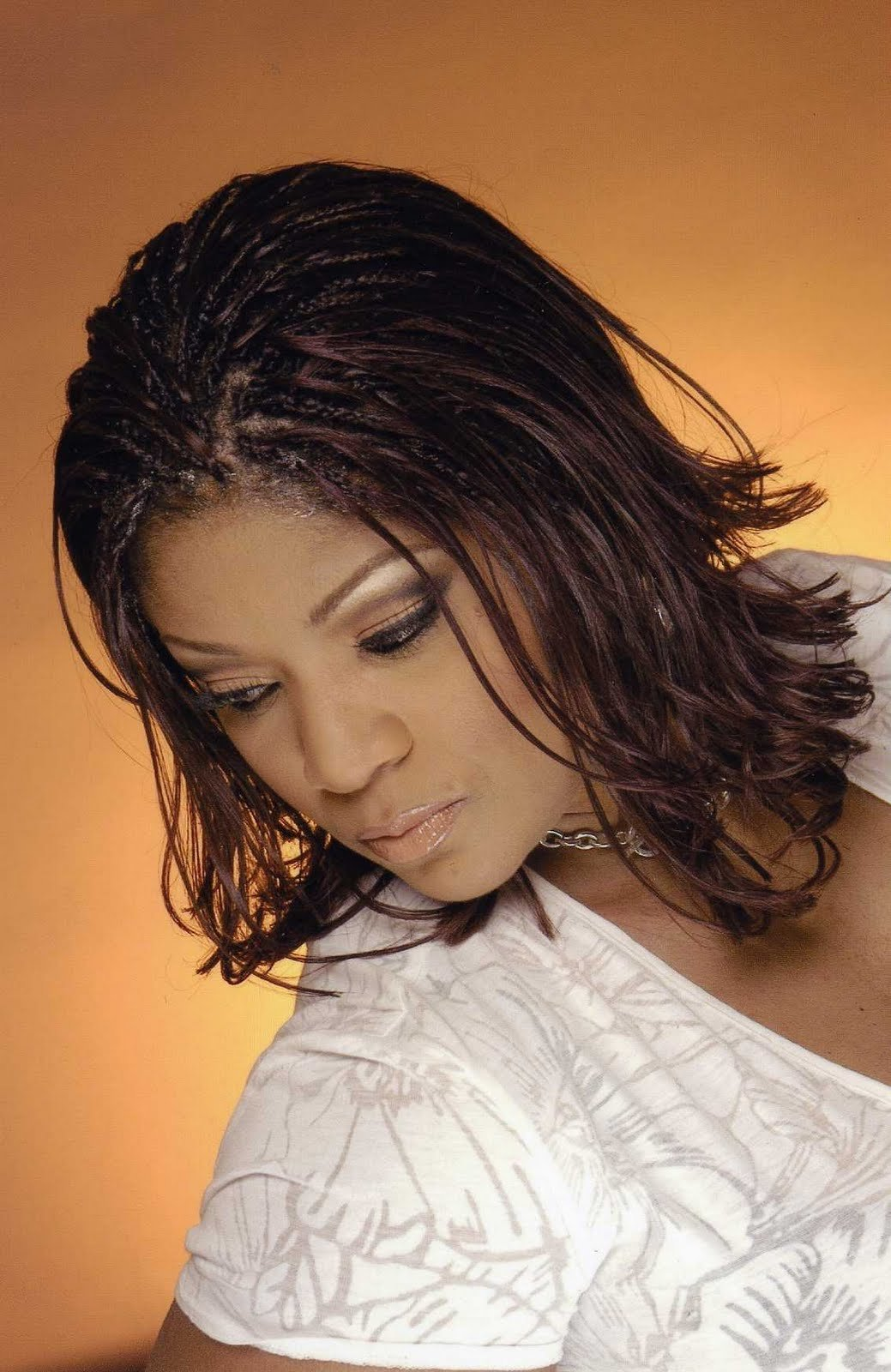 The Best Style Hot Photos Black Braided Hairstyles 2011 Pictures