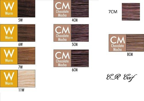 The Best Chi Ionic Permanent Shines Hair Color Marron Boutique Pictures