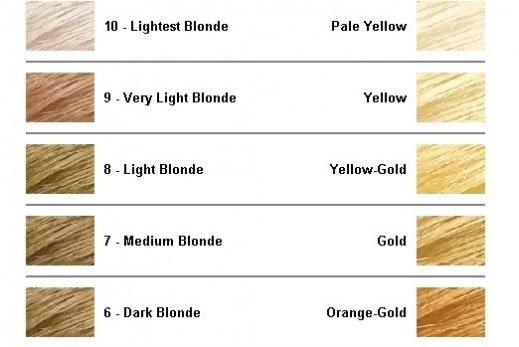 The Best Level 8 Blonde Hair Color Newhairstylesformen2014 Com Pictures