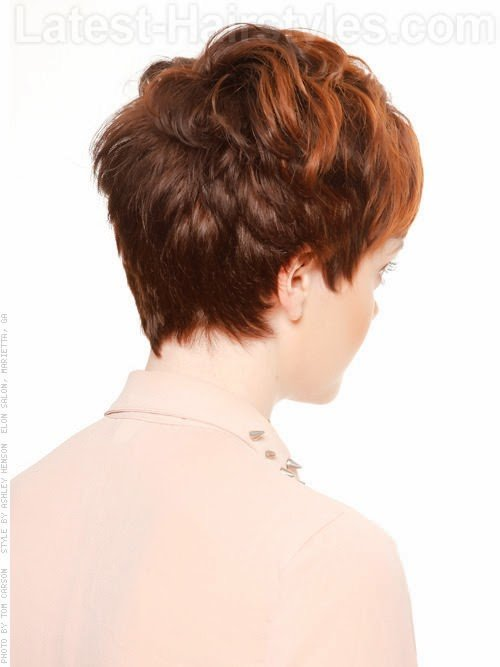 The Best Short Hairstyles Back View Newest Pictures