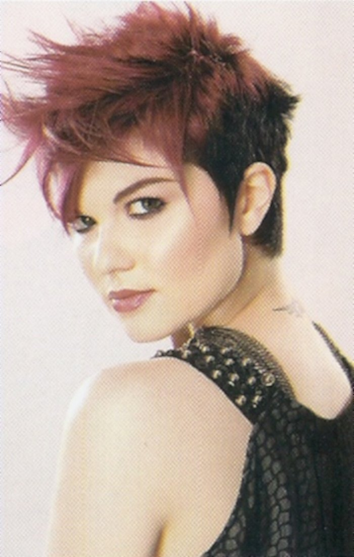 The Best Style Up Short Edgy Hairstyles New 2013 Pictures