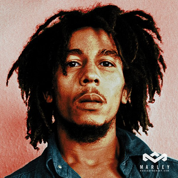 The Best Bob Marley Hairstyle Men Hairstyles Men Hair Styles Pictures
