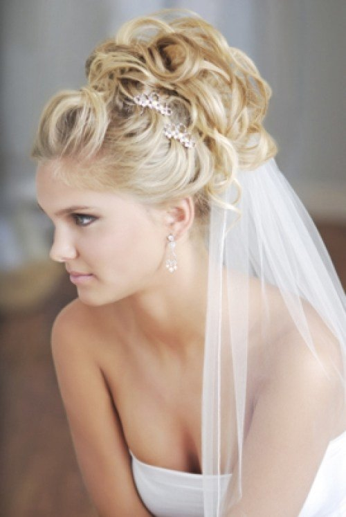 The Best Wedding Updos For Long Hair With Veil Di Candia Fashion Pictures