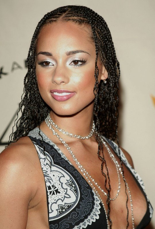 The Best 25 Best Braided Hairstyles For 2016 The Xerxes Pictures