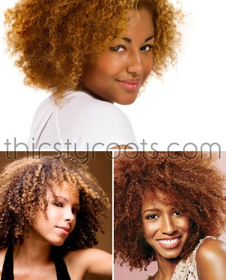 The Best Best Hair Color For Natural African American Hair Pinpoint Pictures