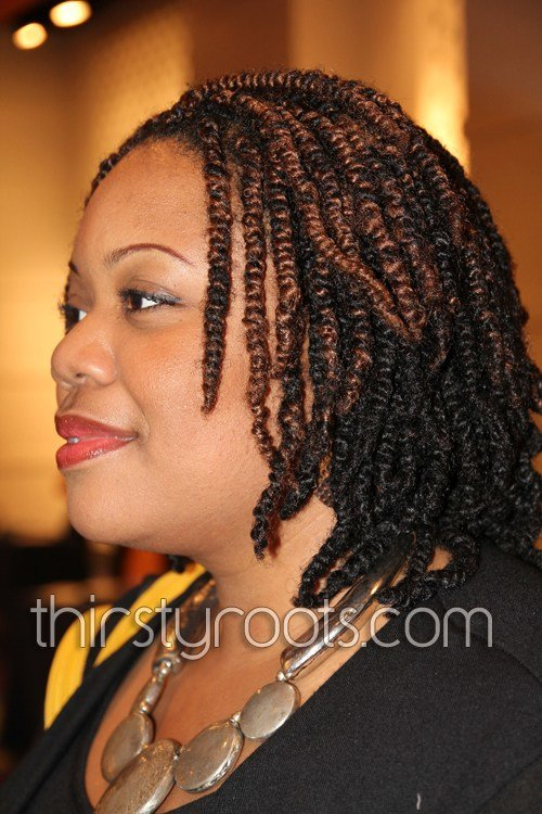 The Best African American Hair Twist Pictures