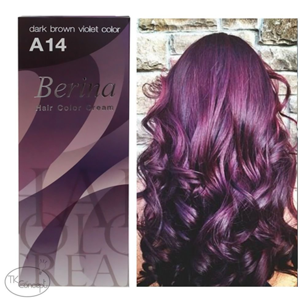 The Best Berina No A14 Dark Brown Violet Permanent Hair Dye Color Pictures
