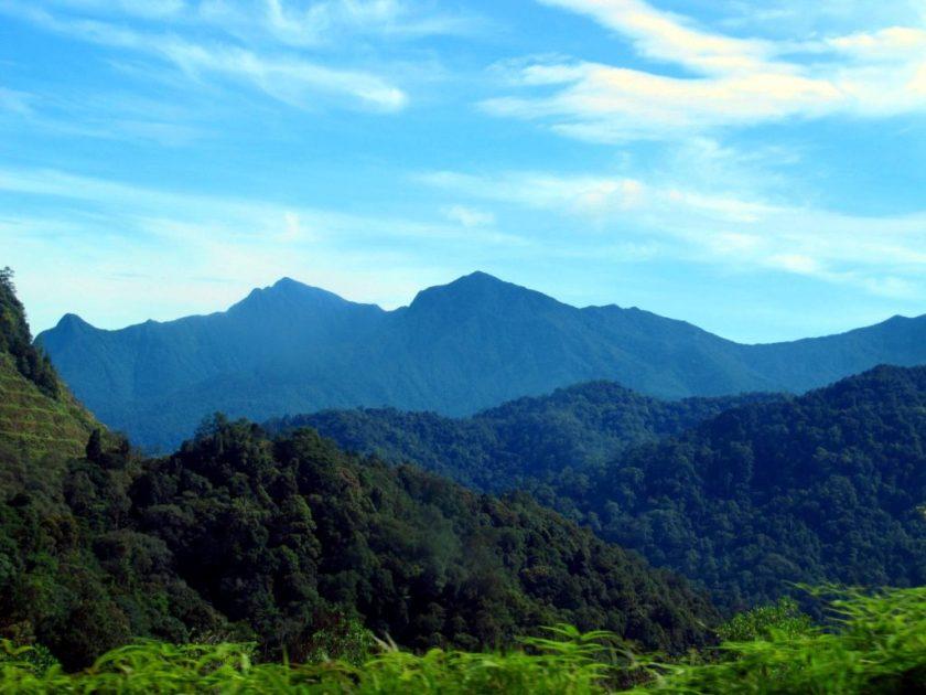 Cameron Highlands in Maleisië