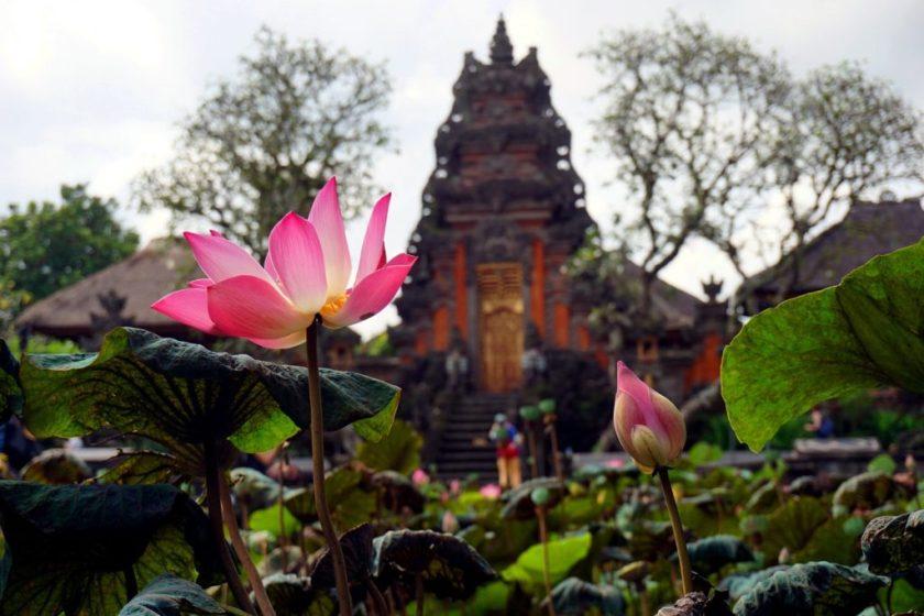rondreis Indonesië Ubud