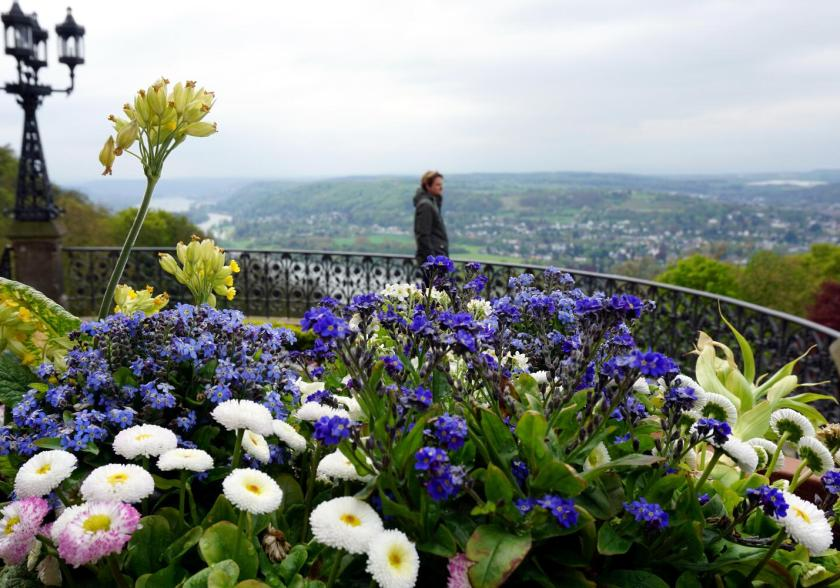 Uitzicht bij Schloss Drachenburg