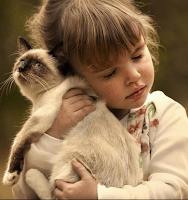 Gyógyító ölelés