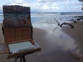 driftwoodeasel