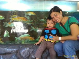 i love fish!