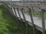Collapsing boardwalk at Rietvlei