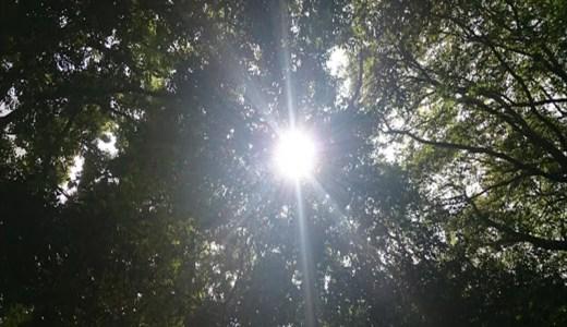 太陽礼拝108回!! 今年はお世話になりました。『Rondo』スペシャル!!