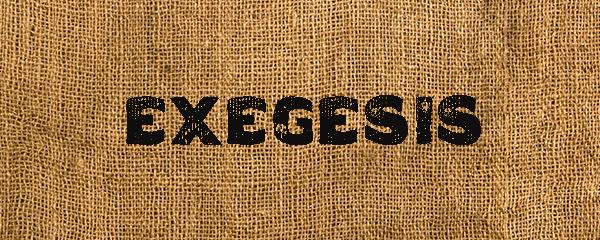 Genesis Exegesis