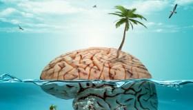Brain on holiday