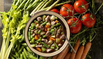 Beef Vegetable Soup with Ingredients