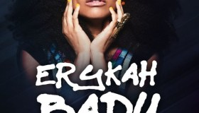 2017 Erykah Badu at Arena Theatre