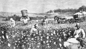 Engraving of Slaves Working In Field by Horace Bradley