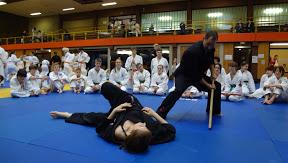 22. Internationaler Jiu Jitsu Lehrgang 10.-11. Maerz 2012 in Otterbach