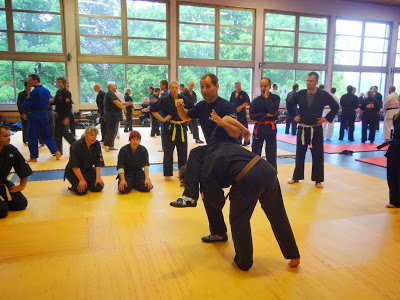 9th Int. Budo Seminar Rheinfelden 29th - 30th june 2013