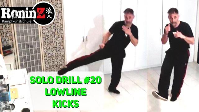 Solo Drill 20 Lowline Kicks