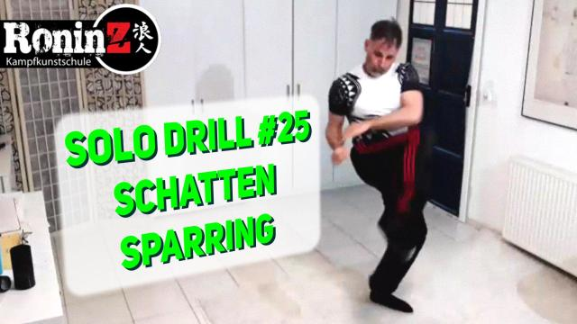 Solo Drill 25 Schattensparring