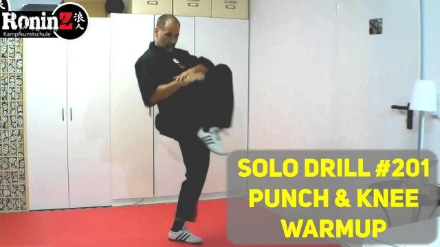 Solo Drill 201 Punch and Knee Warmup