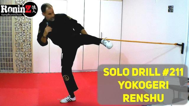 Solo Drill 211 Yokogeri Renshu