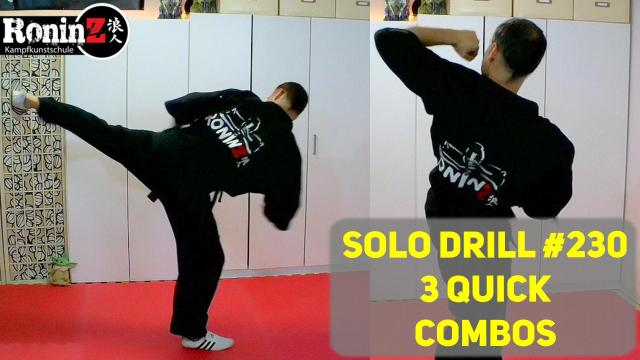 Solo Drill 230 3 quick Combos