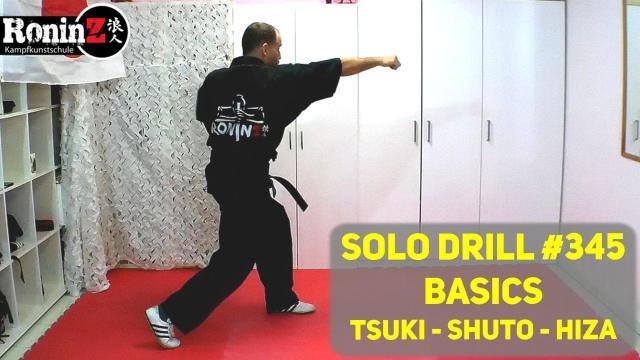 Solo Drill 345 Basics Tsuki - Shuto - Hiza