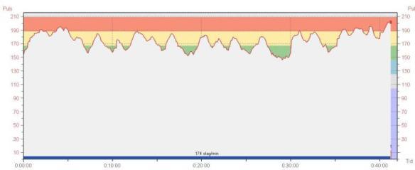 blodomloppet-puls