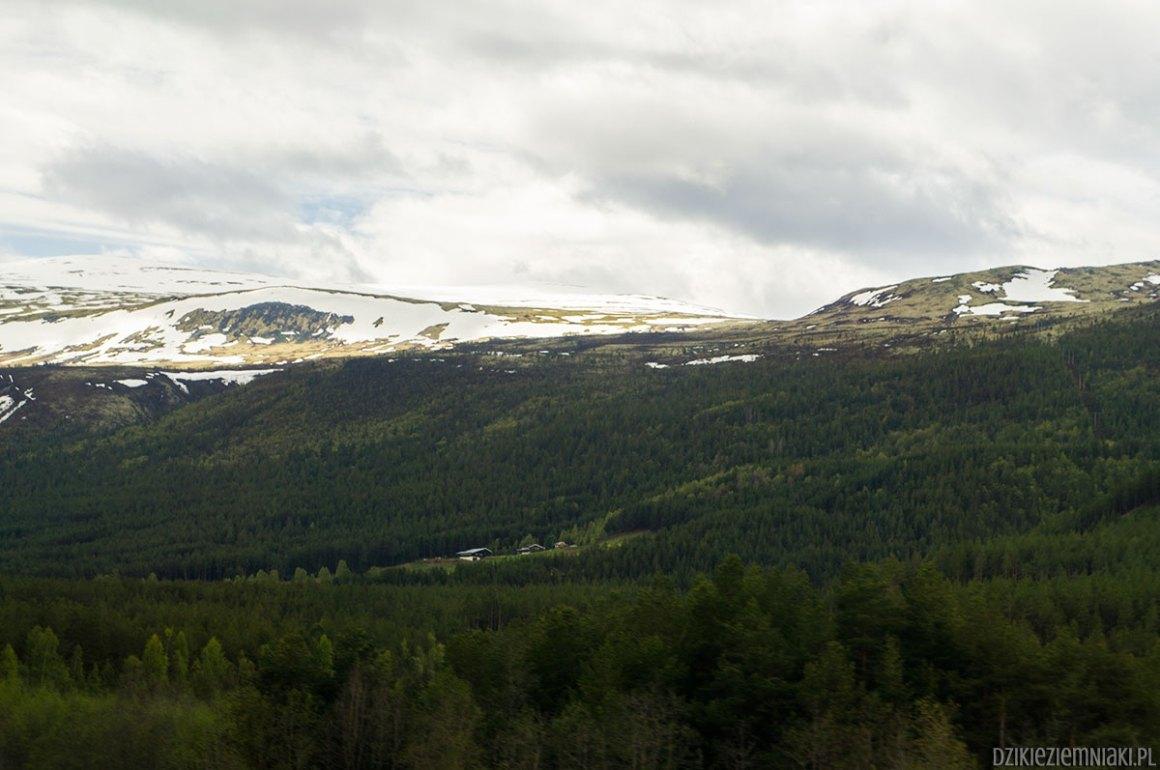 norweska-przyroda-19