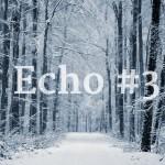 echo-3