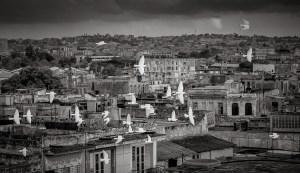 Pigeons over Havana