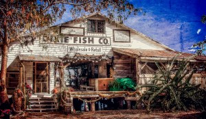 Dixie Fish Company