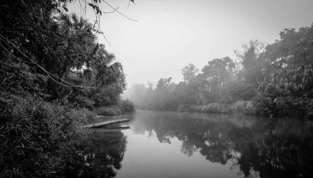 Manatee River with Fog