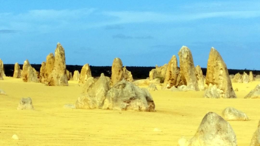 pin desert