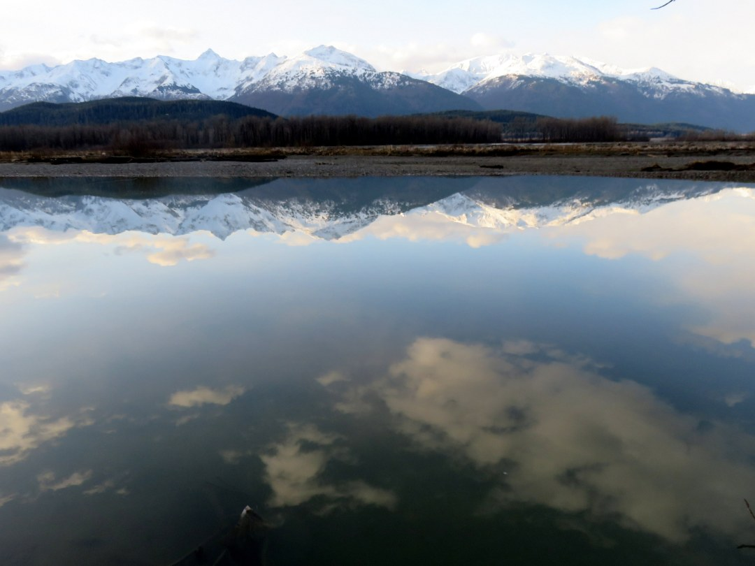 Chilkat river refection sup 2