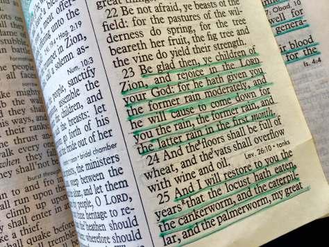 scripture 5