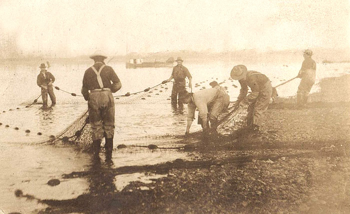 Net fishing on the Columbia R. ca 1904
