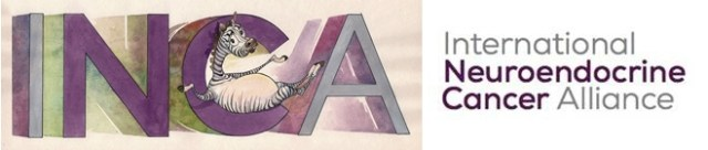 INCA-Netty-Announces-New-Name_14