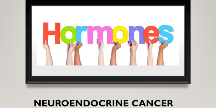 Neuroendocrine Cancer – Horrible Hormones