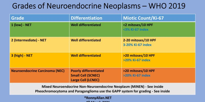 Neuroendocrine Neoplasms – Grade and Stage (incorporating WHO 2019 changes)