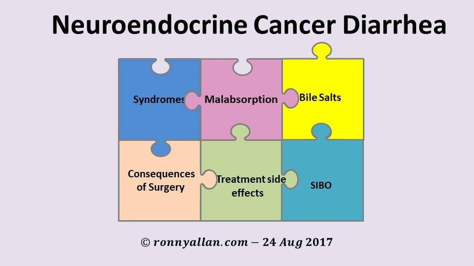 Neuroendocrine Cancer The Diarrhea Jigsaw Ronny Allan Living With Neuroendocrine Cancer