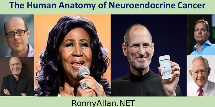 The Human Anatomy of Neuroendocrine Cancer
