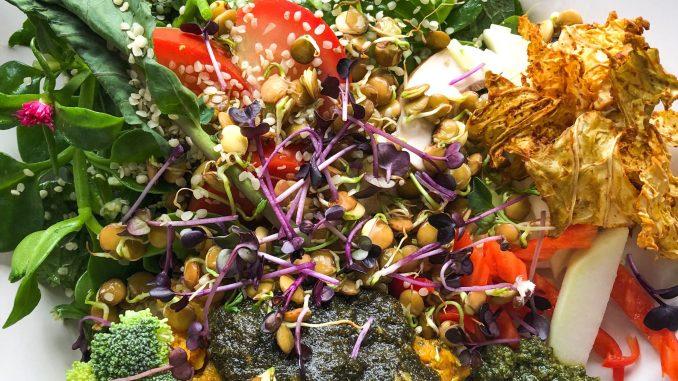 Sprossen und Gemüse